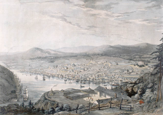 The Town and Harbour of St. John's, 1831 (Artist unknown) Library and Archives Canada, Acc. No. 1989-520-6